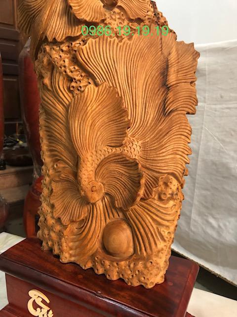 Tìm hiểm về loài gỗ Ngọc am Hoàng Su Phí Hà Giang Báu vật trời đất ban tặng con người