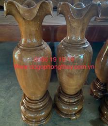 Lộc bình gỗ bách xanh mộc châu hàng gốc
