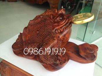 Coc ngậm tiền - Thềm Thừ Phong thủy