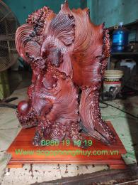 Cá xiêm gỗ hương Sesan Gia lai