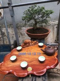 Khay trà gỗ cá chép